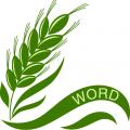 单词小麦 v3.1.6