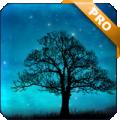 Dream Night Pro Live Wallpaper v1.2.6 Android版
