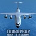 涡轮螺旋桨飞机模拟器 v1.04