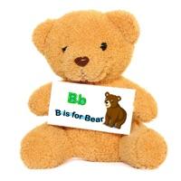 大笨熊学习卡 v3.5 iPhone版